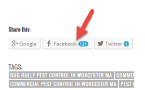 bug bully pest control facebook shares